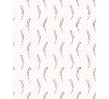 Lavender seamless dot pattern.Cute french wallpaper.  Photographic Print