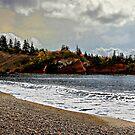 Bay Of Fundy by Nancy Richard