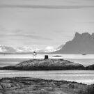 Lofoten Lighthouse by Chris Allen