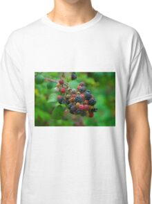 Wild blackberries with green background Classic T-Shirt