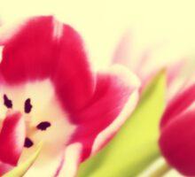 Spring - JUSTART © Sticker