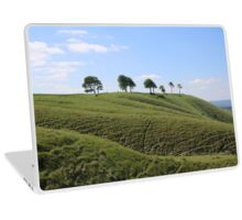 Roundway Down - George Orwell 1984 Laptop Skin