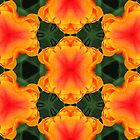 Kaleidoscope Geometry Pattern From Nature 34 by Kenneth Grzesik