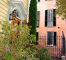 Charleston Scene-80089 by FoxFire Images