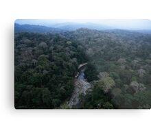 Aerial view of the Darien Gap rainforest Panama Metal Print