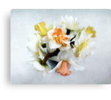 Spring Daffodils Still Life Canvas Print