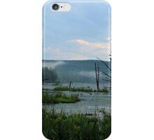 Still Swamp iPhone Case/Skin