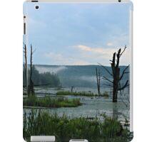 Still Swamp iPad Case/Skin