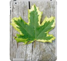 Maple leaf . iPad Case/Skin