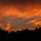 Fire in the Sky by joycemlheureux