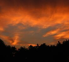 Fire in the Sky by joycemlheureux