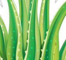 Aloe Vera Sticker