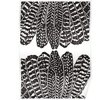 Tribal Feathers  Black Poster
