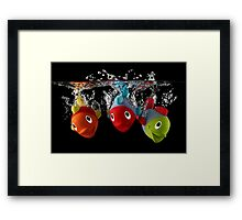 Three Toy Fish With Splash Framed Print