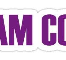 Team Coco Montrese All Stars 2 Sticker
