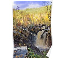 Rogie Falls,  Scotland in Autumn Poster