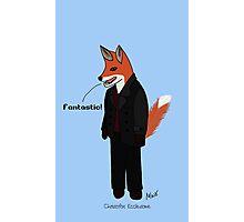 Christofox Eccleston - Fox Who Photographic Print