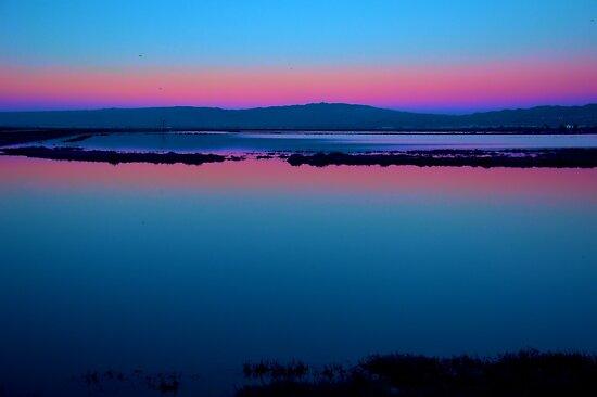 Wetlands Sunset by Bob Wall