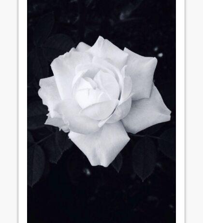 Black and White Rose Sticker