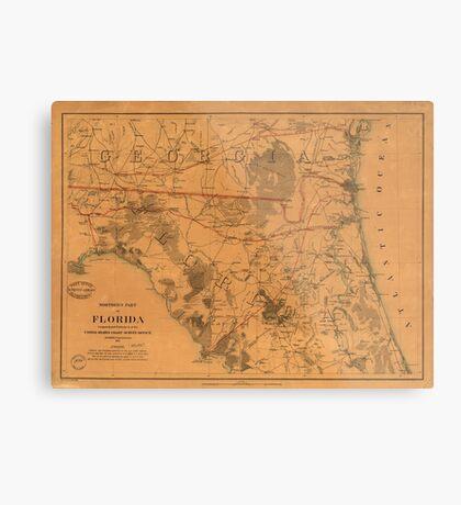 Vintage Map of Northern Florida (1864) Metal Print