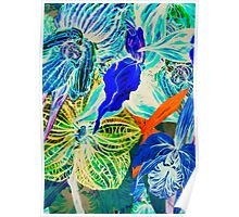 Blue orchid. Poster