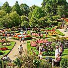 Shrewsbury Garden UK by AnnDixon