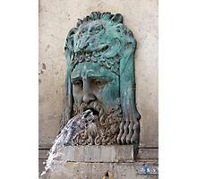 Lion Fountain Photographic Print