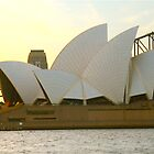 Sails in the Sunset by Penny Smith