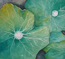 In Rosemary's Garden - Nasturtium Leaf with Dew Drops by Heatherian