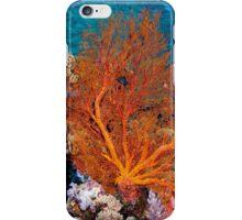 Sea fan in shallow water, Wakatobi National Park, Indonesia iPhone Case/Skin