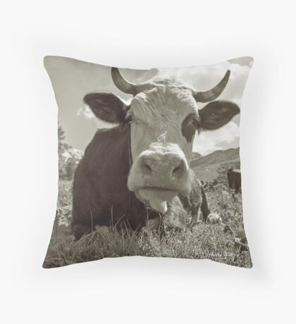 Head in clouds pillow Throw Pillow
