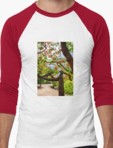 Royal Poinciana or flame tree blossom in Thailand Men's Baseball ¾ T-Shirt
