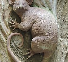 Possum by ScenerybyDesign