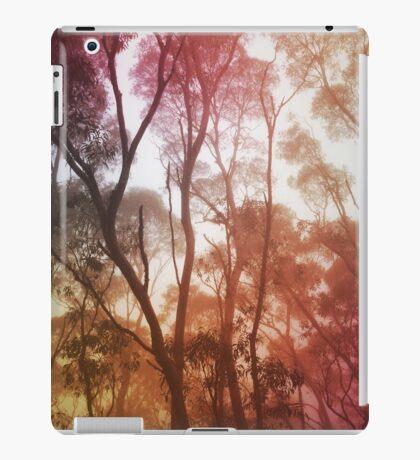 Hazy iPad Case/Skin