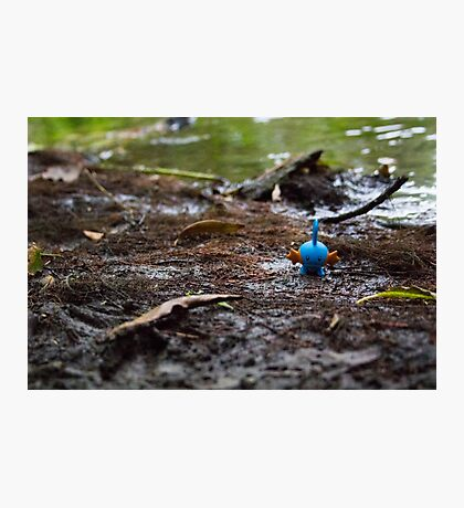 Mudkip in the Mud Photographic Print