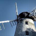 Fulwell Windmill #2 by Andrew Pounder