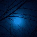 Once in a BLUE Moon......  ^ by ctheworld
