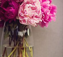 Pink Peony in a vase by LittleBlueWren