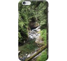 Franklin Falls  iPhone Case/Skin