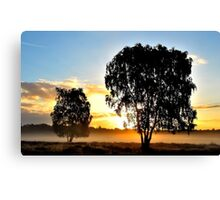 Another early summer morning dream Canvas Print