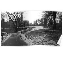 Black White NY Central Park Nr 1 Poster