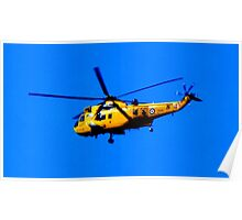 SEAKING RESCUE Poster