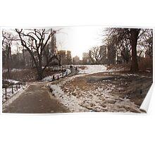NY Central Park Nr 1 Poster