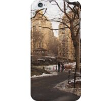 NY Central Park Nr 2 iPhone Case/Skin