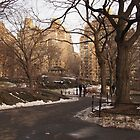 NY Central Park Nr 2 by silvianeto