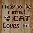 My Cat Loves Me   by Susan S. Kline