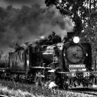 Steam Rail Victoria BW by DavidsArt