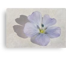 Linum Watercolour Canvas Print