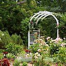 Rose garden by ANNABEL   S. ALENTON