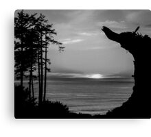 Sunset Over The Ocean And Driftwood In Black And White Canvas Print